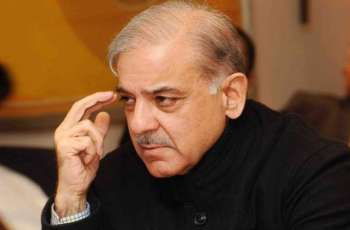 Hearing of Shehbaz Sharif's bail matter in assets beyond means case is under progress at LHC