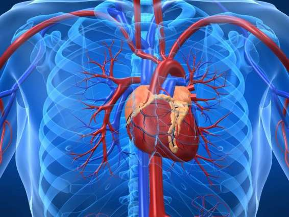 COVID-19 May Not Only Affect Lungs But Also Heart - European Society of Cardiology
