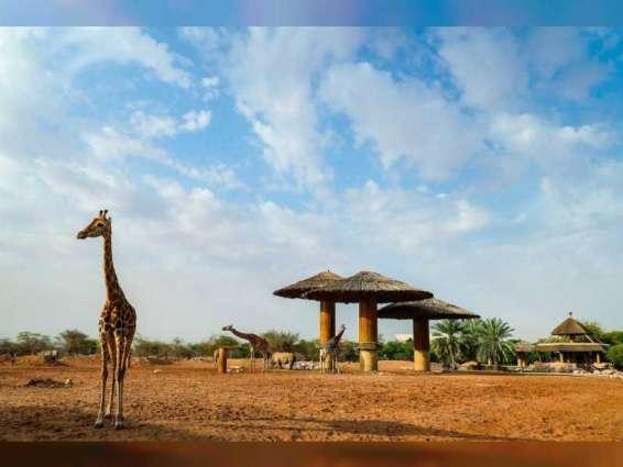 حديقة الحيوانات بالعين تحتفي بانجازاتها تزامنا مع اليوم العالمي للبيئة