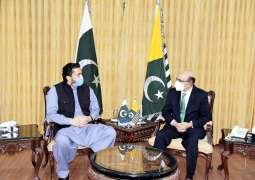 Chairman Kashmir Committee calls on President AJK
