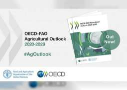 Rising uncertainties from COVID-19 cloud medium-term agricultural prospects: OECD-FAO Agricultural Outlook