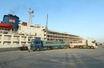 تعزيزا للأمن الغذائي .. 4500 رأس من أبقار الهولشتاين تصل إلى أبوظبي