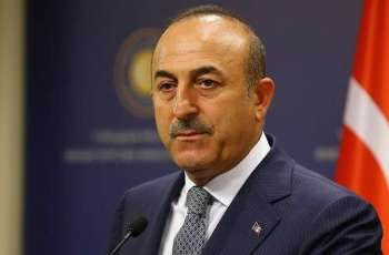Turkish Foreign Minister Calls for EU Backing After Naval Standoff With France