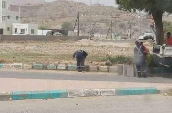 بلدية بارق تواصل جهودها في معالجة التشوهات البصرية