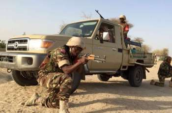 Unarmed Cameroonians Forced Into Guard Duty to Ward Off Boko Haram Threat - Rights NGO