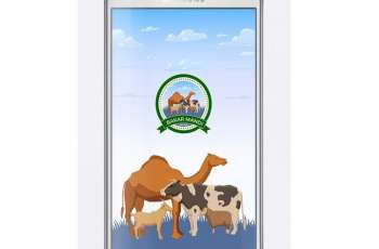 Bakarmandi app launched in Punjab for Online buying and selling of cattles for Eid ul Azha
