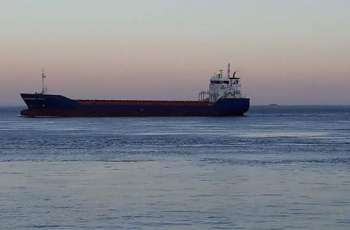 Oil Tanker Quarantined Near Spain's Shores Over COVID-19 Infection - Reports