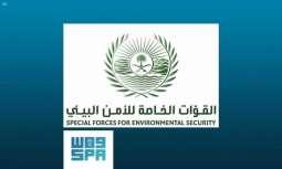 القوات الخاصة للأمن البيئي تُعلن مواعيد السماح بالرعي في روضتي خريم والتنهات