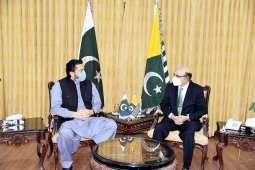 Chairman Kashmir Committee calls on President AJK