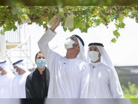 Mohamed bin Zayed tours model farms in Abu Dhabi