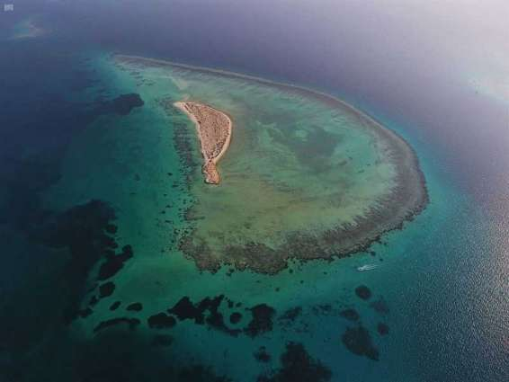 من الوجهات السياحية بالمملكة ... شواطئ تحتضن 100 جزيرة