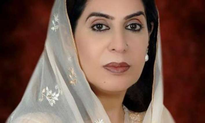 Fehmida Mirza rejects allegations of submitting fake reports in CCI