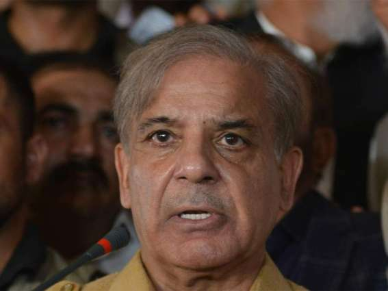 Shehbaz Sharif says federal govt is not serious in taking action against petrol mafia