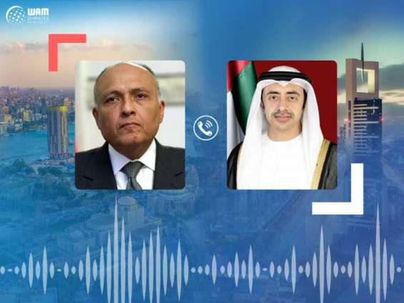 Abdullah bin Zayed, Egyptian FM review regional conditions, brotherly relations