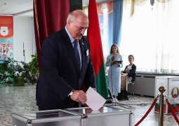 German Lawmakers Say EU Should Not, Will Not Meddle in Belarusian Presidential Election