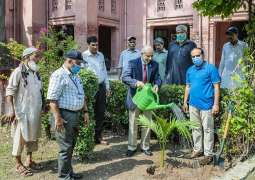 UVAS VC launched tree plantation drive to promote greenery under PM Country's Largest Tree Plantation Campaign