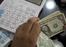 Rupee continues to fall, says PIAF Chairman