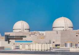 Radiation-proof drones to increase safety and speed up inspection missions at Arab world's 1st nuclear power plant