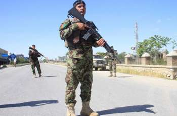 Afghan Forces Kill 7 Militants in Eastern Paktia Province - Police