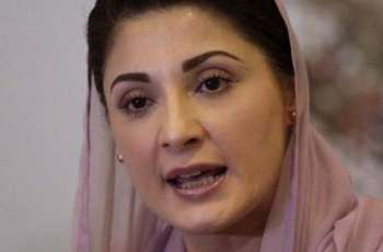 Maryam Nawaz says their silence has exposed PTI govt