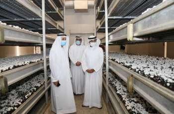 بلحيف النعيمي يناقش تعزيز استخدام نظم الزراعة الحديثة محليا