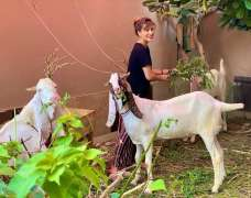 Mehwish Hayat mises her sacrificial animals