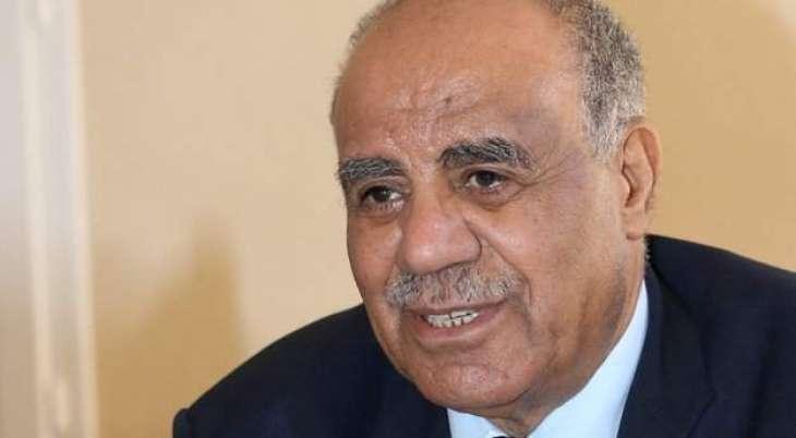 Arab Mideast Peace Initiative Still Valid Despite Israel-UAE Deal - Palestinian Diplomat