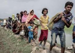 Canada, Netherlands to Intervene in Rohingya Genocide Case Before ICJ - Joint Statement