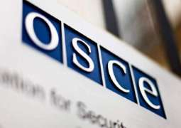 OSCE Envoy to Trilateral Contact Group on Donbas Calls on Sides to Preserve Ceasefire