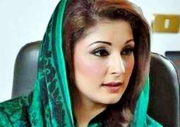 Maryam Nawaz expresses concerns over PTI leaders' support for CCPO Lahore