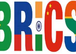Africa-BRICS Format Cooperation Has Great Potential - Russian Diplomat