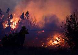 California Wildfire Devastates Over 100,000 Acres of Land in LA County - Fire Dept