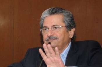 Any hasty decision to close schools will destroy education, says Shafqat Mahmood