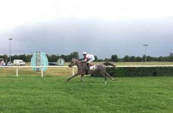 """""""هوجار"""" يفوز بكأس الوثبة في مونتبان ضمن مهرجان منصور بن زايد للخيول العربية الأصيلة"""