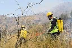 الدفاع المدني يحاصر حريق جبل (عمد) بثقيف