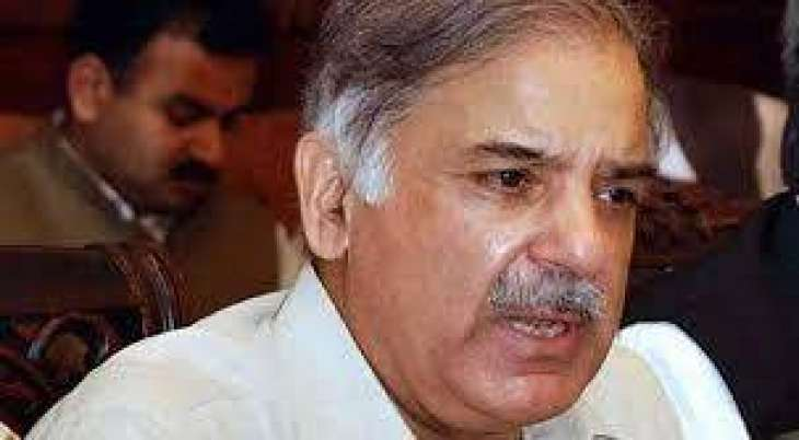 Shehbaz Sharif apologizes over statement about Motorway gang-rape incident