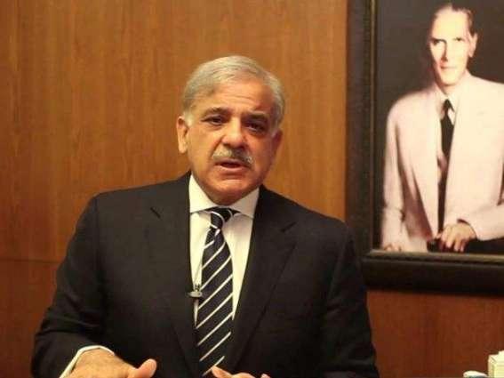 PML-N announces 11-member delegation to attend APC