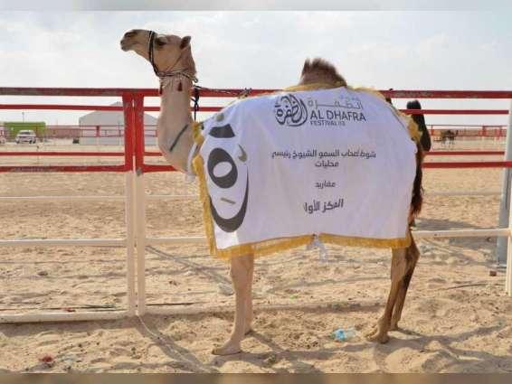 Al Dhafra Festival 2020 to be held under strict safety measures