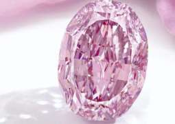 World's Largest Vivid Pink Diamond From Russia to Be Auctioned on November 11- Reports