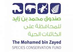 MBZ Fund offers relief grants to help conservation organisations affected by pandemic