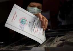 Vote Counting Starts After End of 1st Tour of Elections to Egypt's Parliament Lower House