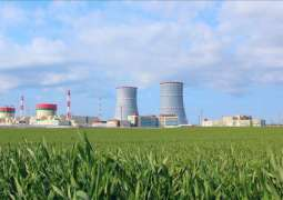 First Unit of Belarusian NPP Expected to Launch in February 2021 - Parliament