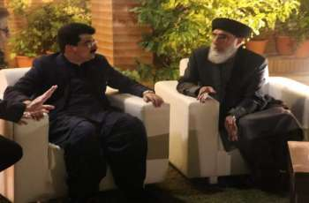 رئیس مجلس الشیوخ الباکستاني یستقبل زعیم الحزب الاسلامي الأفغاني جلب الدین حکمتیار