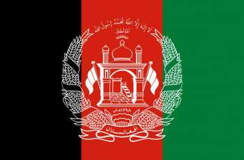 Afghan Gov't Wants Right to Freedom of Expression to Remain in Constitution - Negotiator