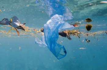 COVID-19 Pandemic Reversed Progress Towards Plastic Phase Out - Parley for the Oceans