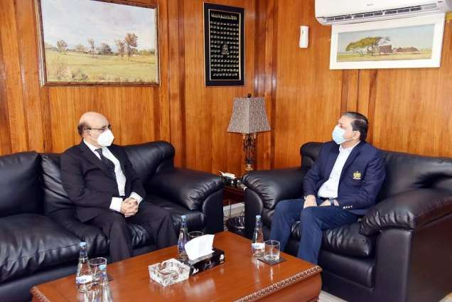 Masood Khan meets Deputy Chairman Senate; discuss latest situation in IOJK
