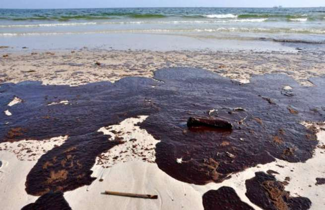 Over 2,000 Sq Feet of Moskva River Polluted With Oil Products, Litter - Emergency Service