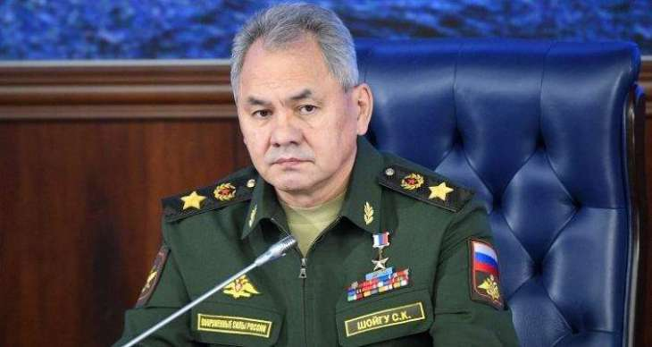 Shoigu Believes Failed 'Color Revolution' in Belarus Was Aimed at Affecting Russia Ties
