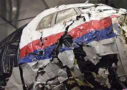 Dutch Prosecutor Backs MH17 Case Defense's Request to Interview Dubinsky as Witness