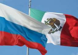 Mexico to Hold Digital Cultural Week in Russia From December 7-11 - Ambassador